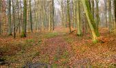 Randonnée Marche LONGPONT - en forêt de Retz_16_Longpont_carrefour du Chapeau des Cordeliers_AR - Photo 22