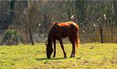 Randonnée Marche LONGPONT - en forêt de Retz_16_Longpont_carrefour du Chapeau des Cordeliers_AR - Photo 49