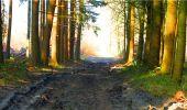 Randonnée Marche LONGPONT - en forêt de Retz_16_Longpont_carrefour du Chapeau des Cordeliers_AR - Photo 8