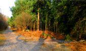 Randonnée Marche LONGPONT - en forêt de Retz_16_Longpont_carrefour du Chapeau des Cordeliers_AR - Photo 37