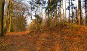 Randonnée Marche LONGPONT - en forêt de Retz_16_Longpont_carrefour du Chapeau des Cordeliers_AR - Photo 33