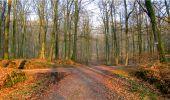 Randonnée Marche LONGPONT - en forêt de Retz_16_Longpont_carrefour du Chapeau des Cordeliers_AR - Photo 18