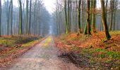 Randonnée Marche LONGPONT - en forêt de Retz_16_Longpont_carrefour du Chapeau des Cordeliers_AR - Photo 21