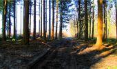 Randonnée Marche LONGPONT - en forêt de Retz_16_Longpont_carrefour du Chapeau des Cordeliers_AR - Photo 7