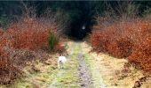 Randonnée Marche LONGPONT - en forêt de Retz_16_Longpont_carrefour du Chapeau des Cordeliers_AR - Photo 55