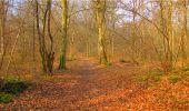 Randonnée Marche LONGPONT - en forêt de Retz_16_Longpont_carrefour du Chapeau des Cordeliers_AR - Photo 79