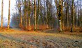Randonnée Marche LONGPONT - en forêt de Retz_16_Longpont_carrefour du Chapeau des Cordeliers_AR - Photo 9