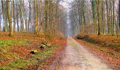 Randonnée Marche LONGPONT - en forêt de Retz_16_Longpont_carrefour du Chapeau des Cordeliers_AR - Photo 23