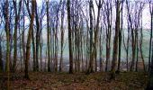 Randonnée Marche LONGPONT - en forêt de Retz_16_Longpont_carrefour du Chapeau des Cordeliers_AR - Photo 1