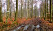 Randonnée Marche LONGPONT - en forêt de Retz_16_Longpont_carrefour du Chapeau des Cordeliers_AR - Photo 29