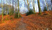 Randonnée Marche LONGPONT - en forêt de Retz_16_Longpont_carrefour du Chapeau des Cordeliers_AR - Photo 19