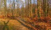 Randonnée Marche LONGPONT - en forêt de Retz_16_Longpont_carrefour du Chapeau des Cordeliers_AR - Photo 41