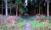 Randonnée Marche LONGPONT - en forêt de Retz_16_Longpont_carrefour du Chapeau des Cordeliers_AR - Photo 54