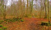 Randonnée Marche LONGPONT - en forêt de Retz_16_Longpont_carrefour du Chapeau des Cordeliers_AR - Photo 73