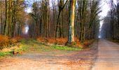 Randonnée Marche LONGPONT - en forêt de Retz_16_Longpont_carrefour du Chapeau des Cordeliers_AR - Photo 57