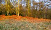 Randonnée Marche LONGPONT - en forêt de Retz_16_Longpont_carrefour du Chapeau des Cordeliers_AR - Photo 62