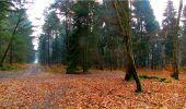 Randonnée Marche LONGPONT - en forêt de Retz_16_Longpont_carrefour du Chapeau des Cordeliers_AR - Photo 38