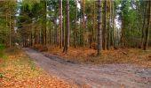 Randonnée Marche LONGPONT - en forêt de Retz_16_Longpont_carrefour du Chapeau des Cordeliers_AR - Photo 39