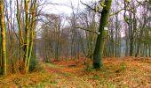 Randonnée Marche LONGPONT - en forêt de Retz_16_Longpont_carrefour du Chapeau des Cordeliers_AR - Photo 59