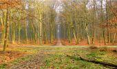 Randonnée Marche LONGPONT - en forêt de Retz_16_Longpont_carrefour du Chapeau des Cordeliers_AR - Photo 65