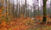Randonnée Marche LONGPONT - en forêt de Retz_16_Longpont_carrefour du Chapeau des Cordeliers_AR - Photo 43