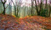 Randonnée Marche LONGPONT - en forêt de Retz_16_Longpont_carrefour du Chapeau des Cordeliers_AR - Photo 61