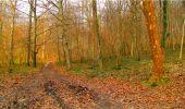 Randonnée Marche LONGPONT - en forêt de Retz_16_Longpont_carrefour du Chapeau des Cordeliers_AR - Photo 78
