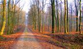 Randonnée Marche LONGPONT - en forêt de Retz_16_Longpont_carrefour du Chapeau des Cordeliers_AR - Photo 16