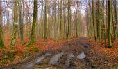 Randonnée Marche LONGPONT - en forêt de Retz_16_Longpont_carrefour du Chapeau des Cordeliers_AR - Photo 27