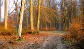 Randonnée Marche LONGPONT - en forêt de Retz_16_Longpont_carrefour du Chapeau des Cordeliers_AR - Photo 10