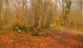 Randonnée Marche LONGPONT - en forêt de Retz_16_Longpont_carrefour du Chapeau des Cordeliers_AR - Photo 70