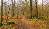 Trail Walk LONGPONT - en forêt de Retz_17_Longpont_etangs de la Ramee_AR - Photo 16