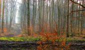 Trail Walk LONGPONT - en forêt de Retz_17_Longpont_etangs de la Ramee_AR - Photo 56