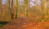 Trail Walk LONGPONT - en forêt de Retz_17_Longpont_etangs de la Ramee_AR - Photo 11
