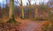 Trail Walk LONGPONT - en forêt de Retz_17_Longpont_etangs de la Ramee_AR - Photo 88