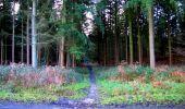Trail Walk LONGPONT - en forêt de Retz_17_Longpont_etangs de la Ramee_AR - Photo 74
