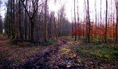Trail Walk LONGPONT - en forêt de Retz_17_Longpont_etangs de la Ramee_AR - Photo 36