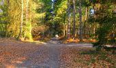 Trail Walk LONGPONT - en forêt de Retz_17_Longpont_etangs de la Ramee_AR - Photo 24