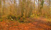 Trail Walk LONGPONT - en forêt de Retz_17_Longpont_etangs de la Ramee_AR - Photo 17