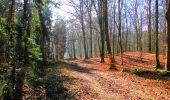 Trail Walk LONGPONT - en forêt de Retz_17_Longpont_etangs de la Ramee_AR - Photo 28