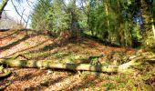 Trail Walk LONGPONT - en forêt de Retz_17_Longpont_etangs de la Ramee_AR - Photo 66
