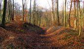 Trail Walk LONGPONT - en forêt de Retz_17_Longpont_etangs de la Ramee_AR - Photo 39