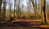 Trail Walk LONGPONT - en forêt de Retz_17_Longpont_etangs de la Ramee_AR - Photo 38