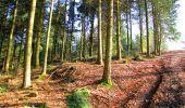 Trail Walk LONGPONT - en forêt de Retz_17_Longpont_etangs de la Ramee_AR - Photo 62