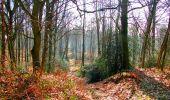 Trail Walk LONGPONT - en forêt de Retz_17_Longpont_etangs de la Ramee_AR - Photo 65