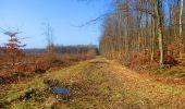 Trail Walk LONGPONT - en forêt de Retz_17_Longpont_etangs de la Ramee_AR - Photo 23