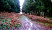 Trail Walk LONGPONT - en forêt de Retz_17_Longpont_etangs de la Ramee_AR - Photo 71