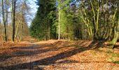 Trail Walk LONGPONT - en forêt de Retz_17_Longpont_etangs de la Ramee_AR - Photo 27