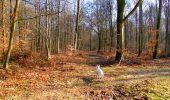 Trail Walk LONGPONT - en forêt de Retz_17_Longpont_etangs de la Ramee_AR - Photo 22