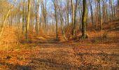 Trail Walk LONGPONT - en forêt de Retz_17_Longpont_etangs de la Ramee_AR - Photo 37